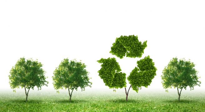 Green Living Paper Recycling Saves Trees